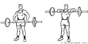 shoulders barbell exercises  barbell workout shoulder