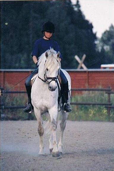 MERITER | Utbildning av häst - Stall Simberg