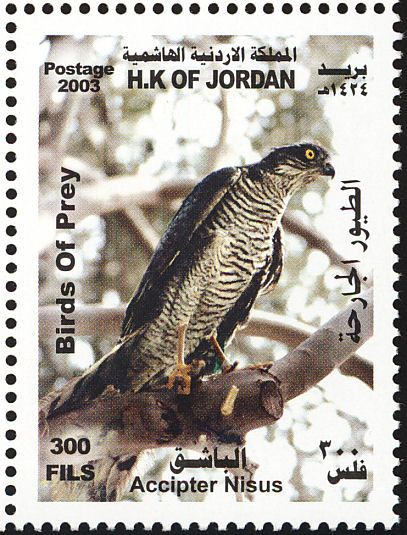 Eurasian Sparrowhawk Stamps Mainly Images Gallery Format Roofvogels