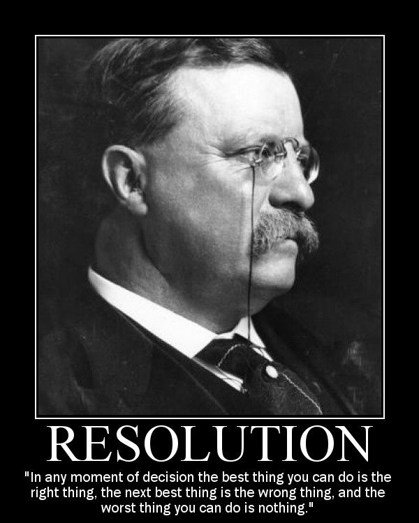Theodore Roosevelt Quotes Mesmerizing Theodore Roosevelt Motivational Posters  Theodore Roosevelt . Design Decoration