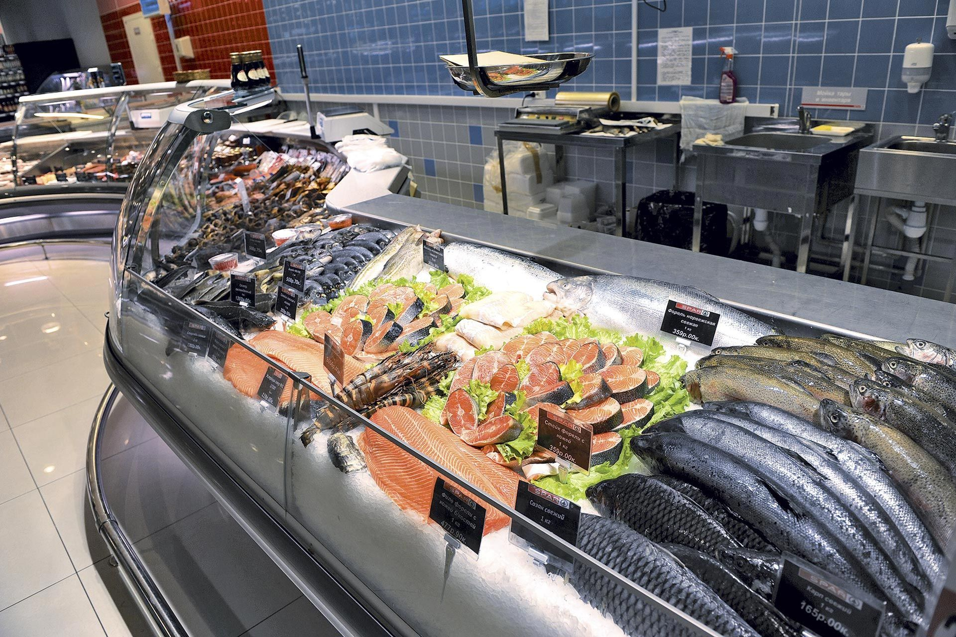 Fish 1515 Design Seafood Store Grocery Store Design Food