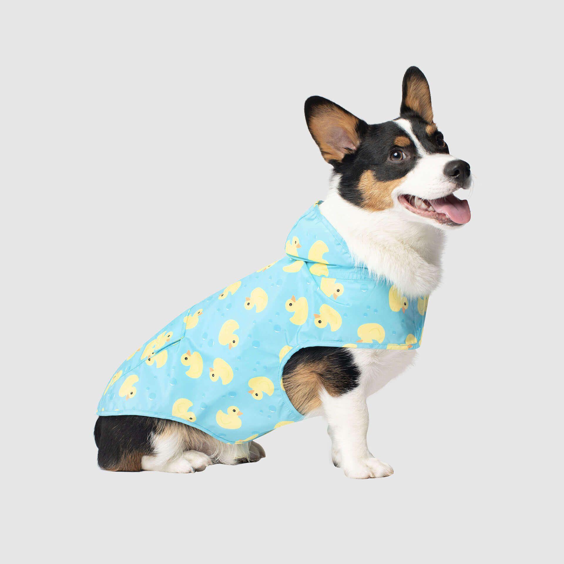 Pick Me Dog Poncho Dog poncho, Dog personality, Pooch