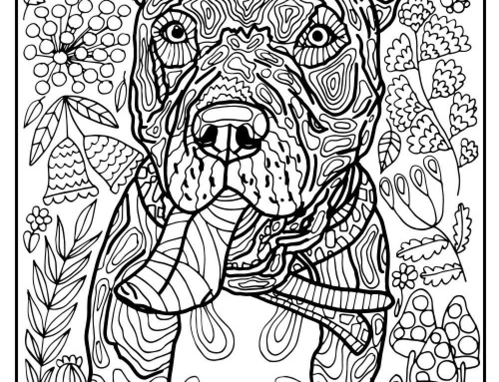 "French Bulldog Portrait Art Dog Print in 8""x10"" Mat from"