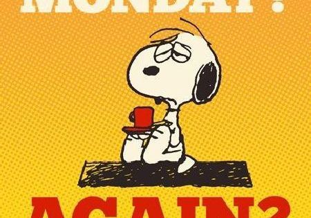 Das könnte Dir auch gefallen:How i look on Mondays!Another monday is on it's way...Monday... we meet again!It's definitely MondayI hate Mondays!What's going on? It's monday!Feels like MondayIt's monday againAn Unfair MondayDepressed on MondaysIt's Monday, Bring Me... #comic #fun #lifestyle