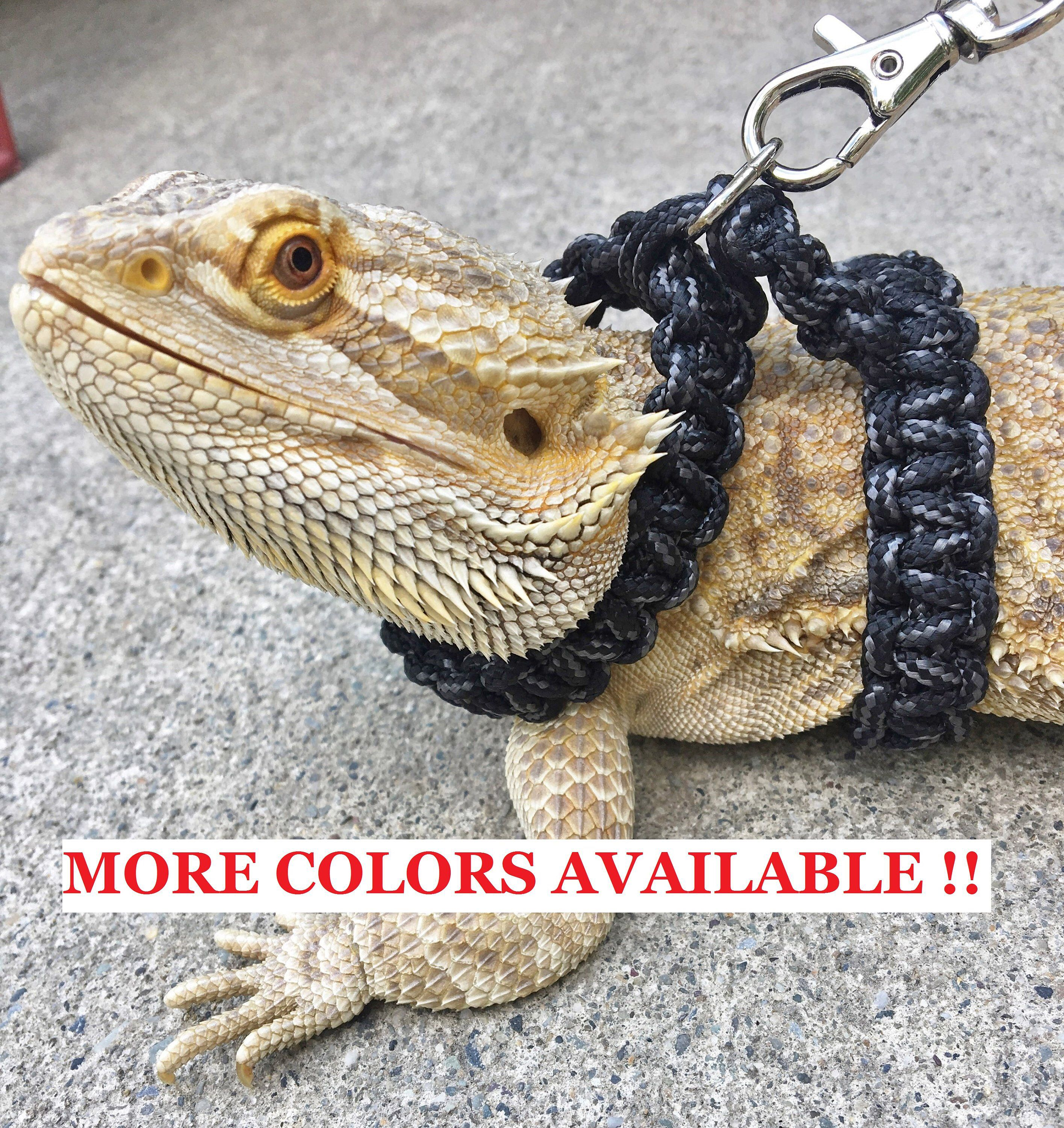 Reptile Harness Bearded Dragon Paracord Harness / collar