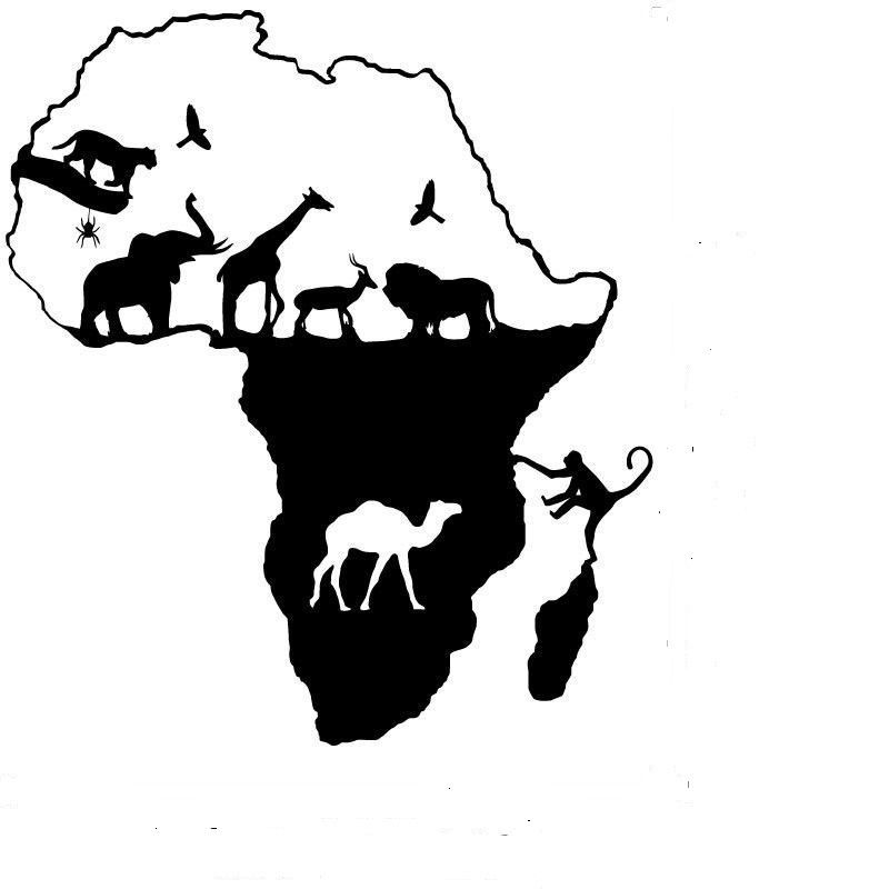 193 Frica Wall Decal 225 Frica Animales Safari Jirafa Elefante