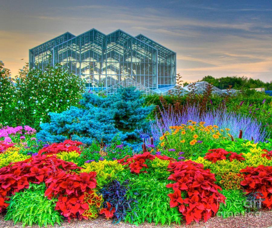9d38a9742ffcf98737ae755342b8f46b - Meijer Gardens Butterfly House Grand Rapids