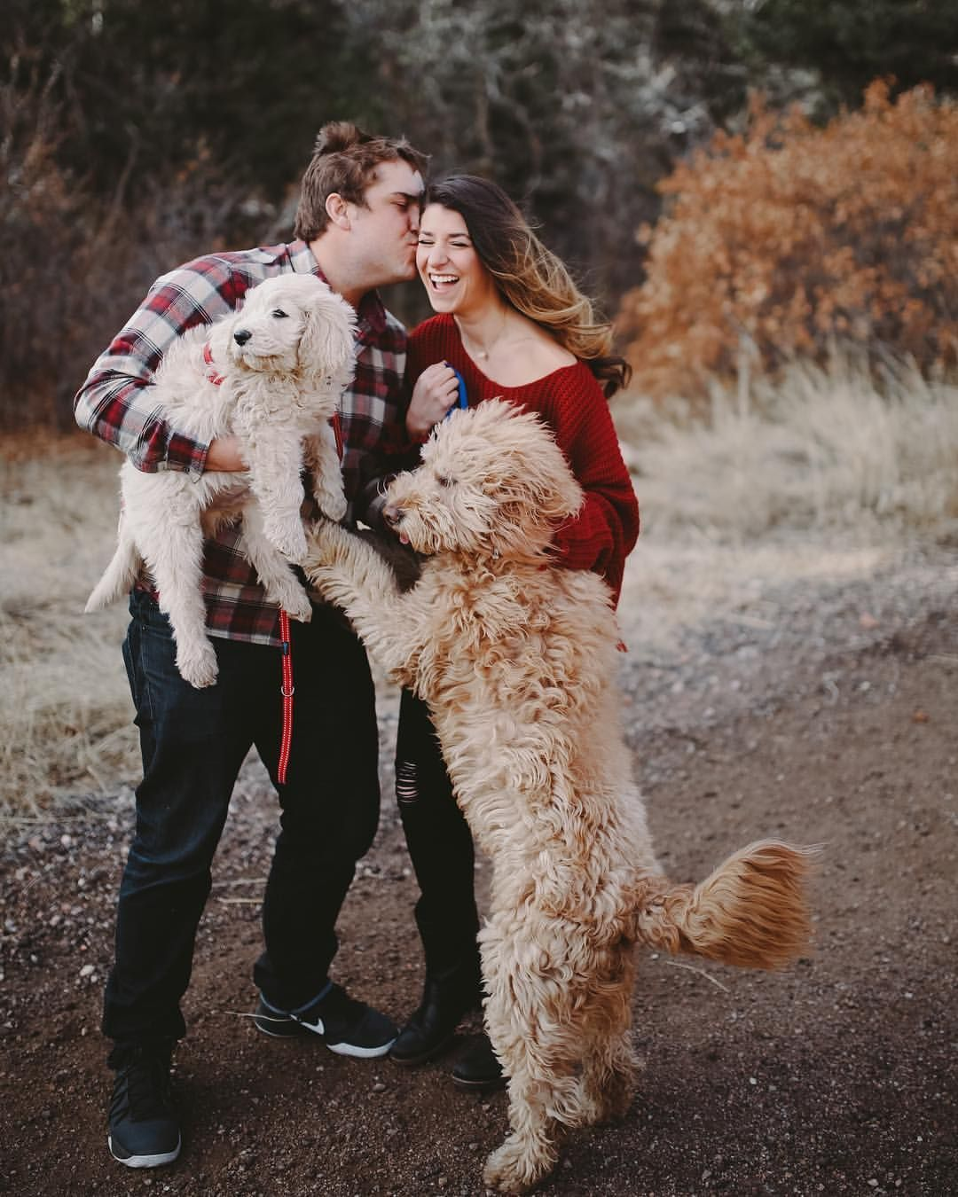 PS. If you have a goldendoodle, always bring them to your