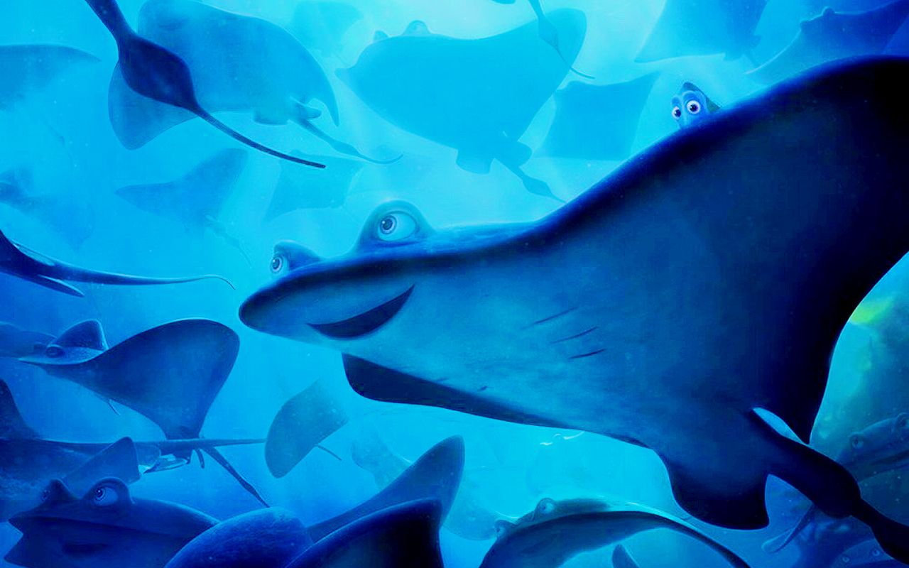Dory Wallpapers 1200x599 Finding 36