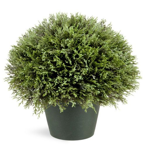 Christmas Bush In Pots.15 Juniper Bush With Pot For The Home Juniper Bush Artificial