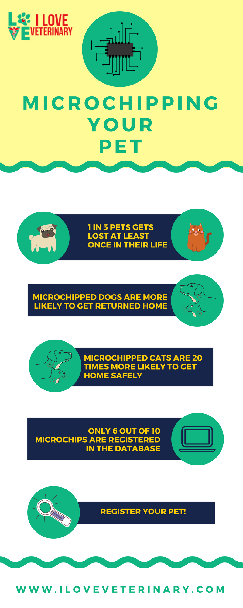 Best Pet Insurance Ever 7