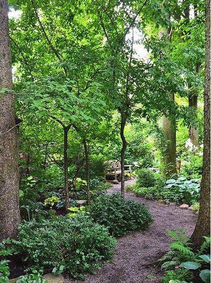 Woodland Garden Design Ideas   Gardens Design Ideas   Pinterest   Woodland  Garden And Gardens
