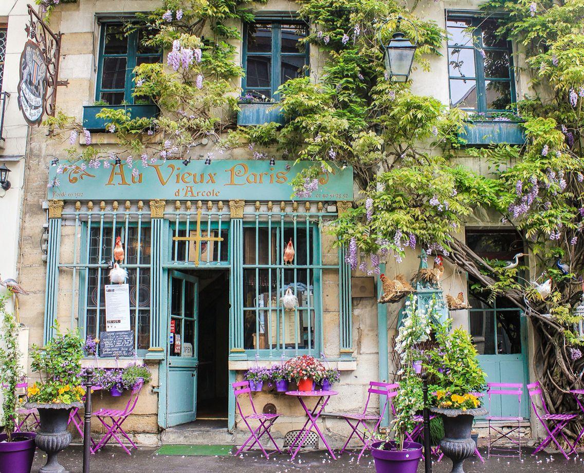 Au Vieux Paris d'Arcole  #wisteria #paris #france