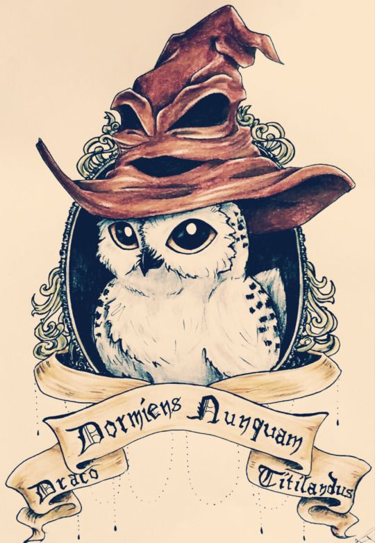 10 Mysterious Owl Tattoo Designs & Meanings   Harry potter ...