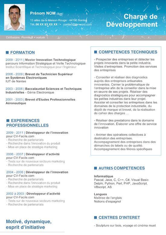 Télécharger Ce Modèle Cv Chargé De Développement Au Format Word - resume profile