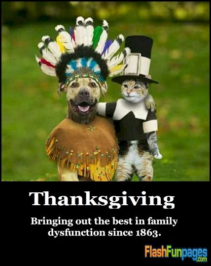 Funny Thanksgiving Quotes Adorable Happy Thanksgiving Dacharris  Pinterest  Thanksgiving Quotes
