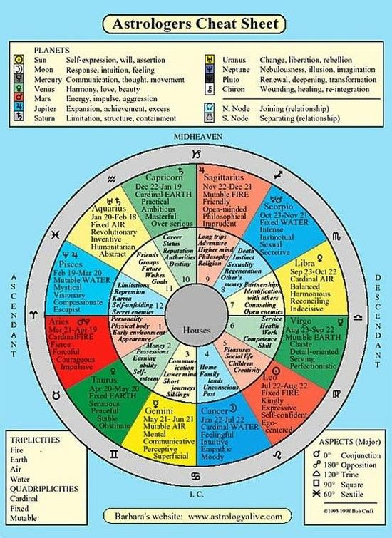 Signplanthouse Definitions Of Natal Chart Astrology