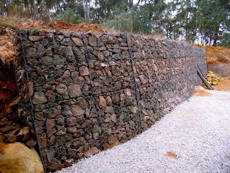 The Result Is A Wall That, Once Itu0027s Got Espaliered Orange Trees Growing Up  Against. Gabion Retaining ...