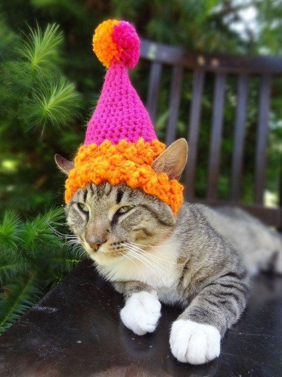 Cat Dog Birthday Party Hat