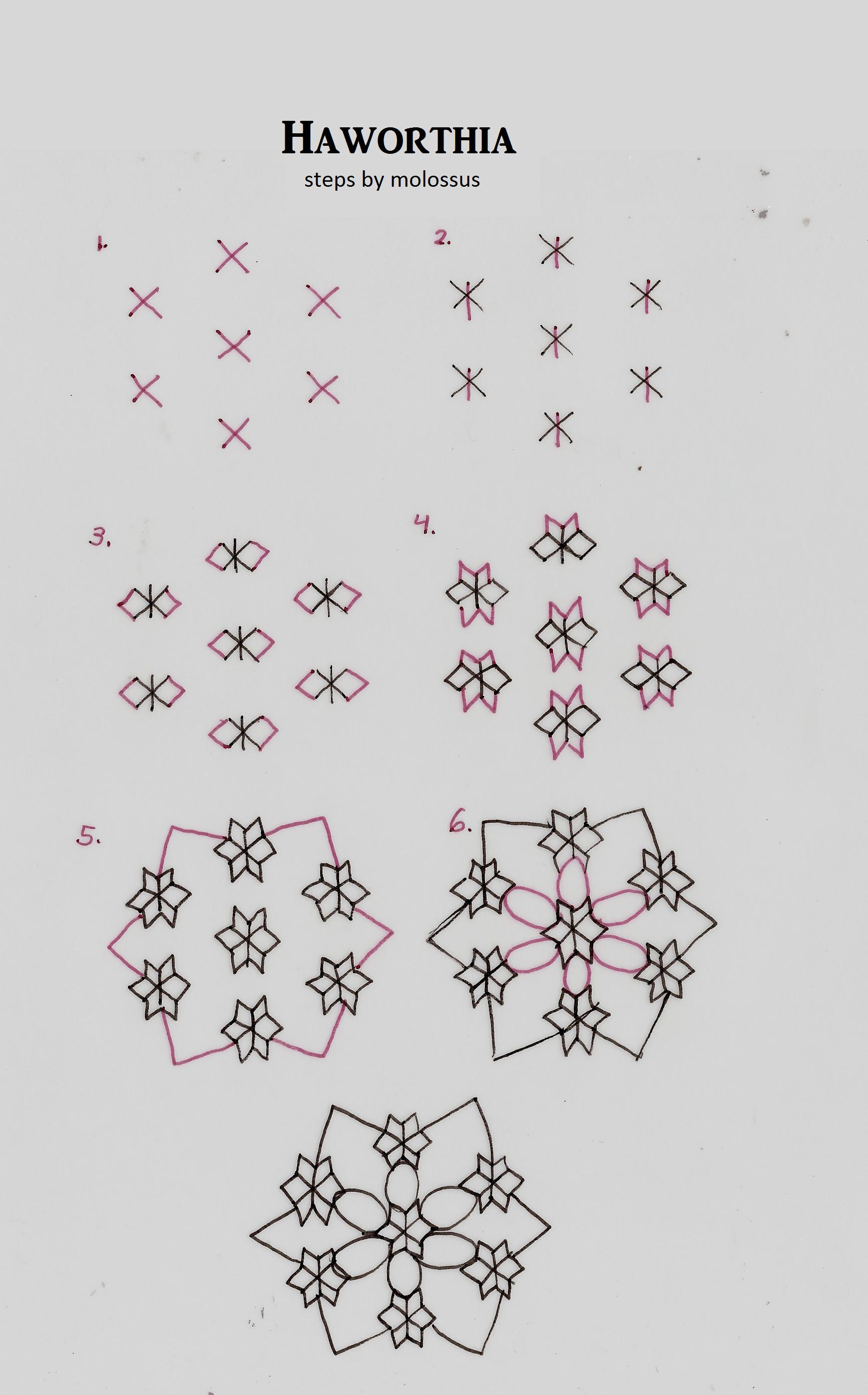 Pattern Haworthia Doodling Pinterest Malen Und Zeichnen