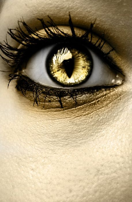 kontaktlinsen bernsteinfarben