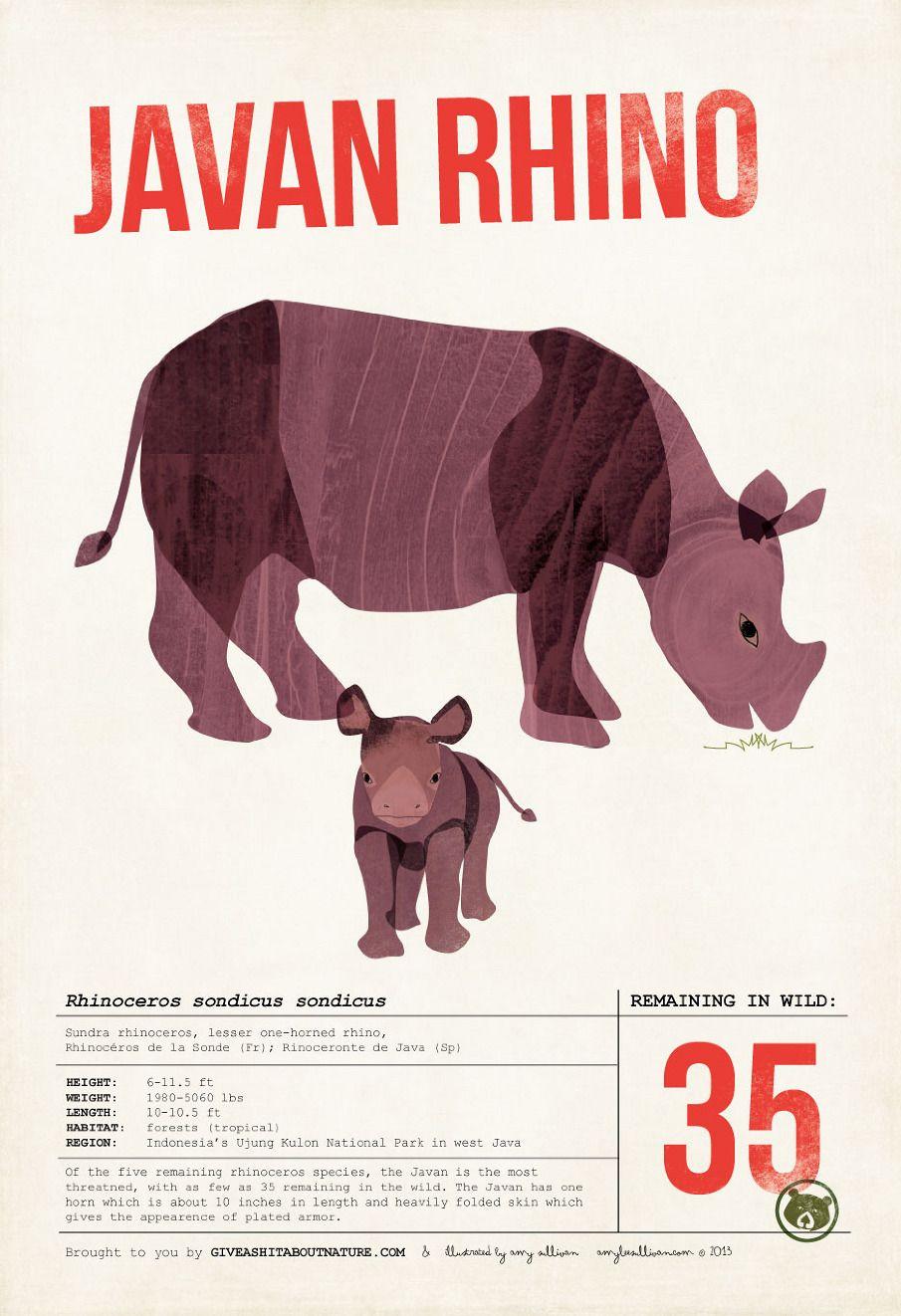 Rhinoceros kinder