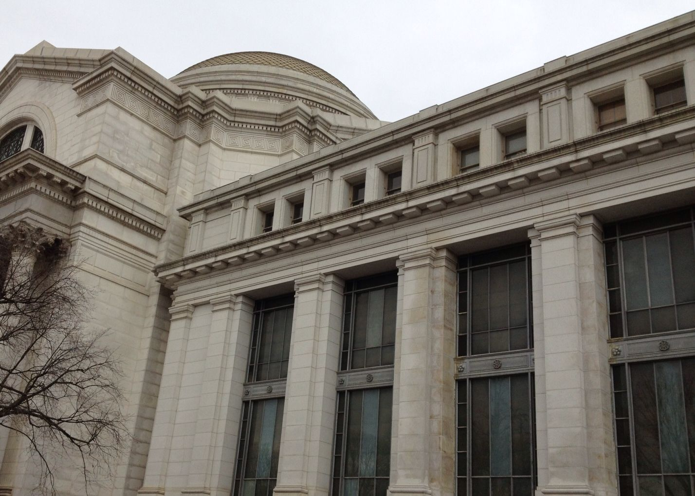 Natural History Museum, Washington, DC Natural history