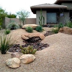 Desert Gardening In The Southwest Large Yard Landscaping Xeriscape Front Landscape