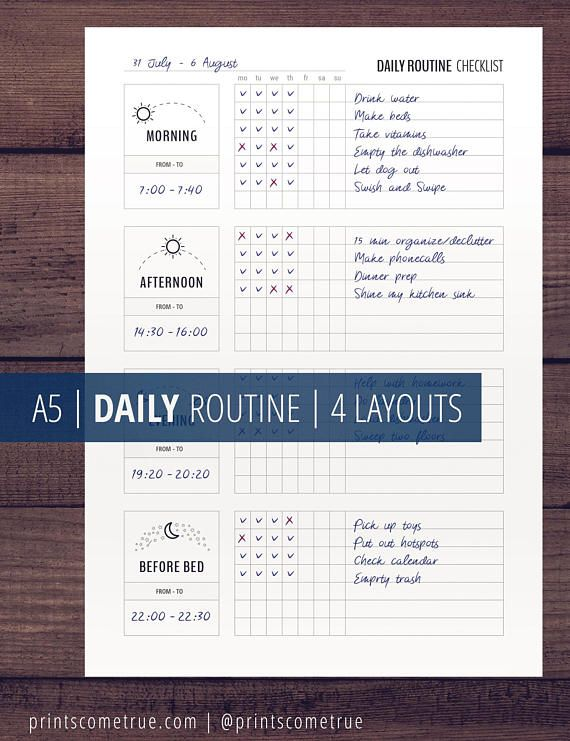 photo relating to Morning Routine Flylady Printable known as Everyday Schedule Planner Printable, Flylady Early morning Program