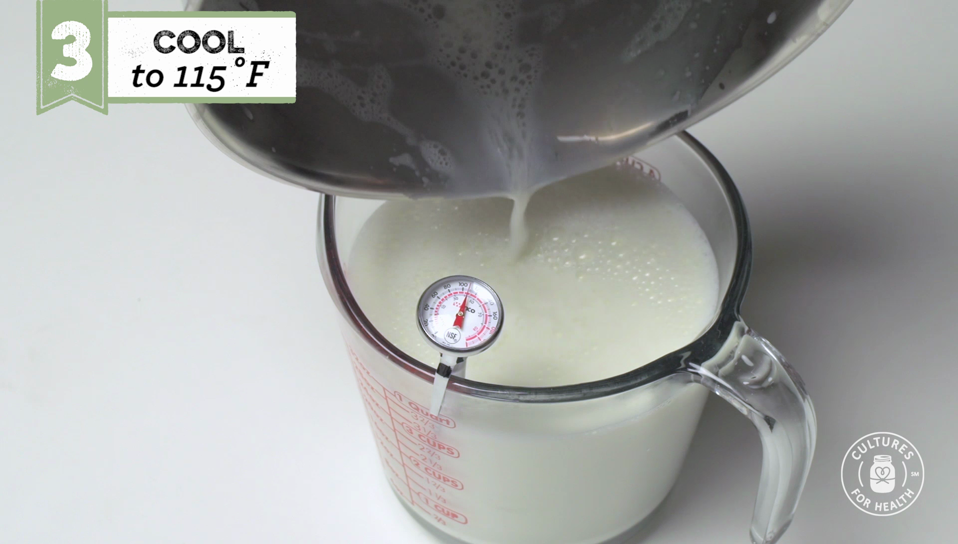 HOWTO VIDEO Making Traditional & Mild Flavor Yogurt at