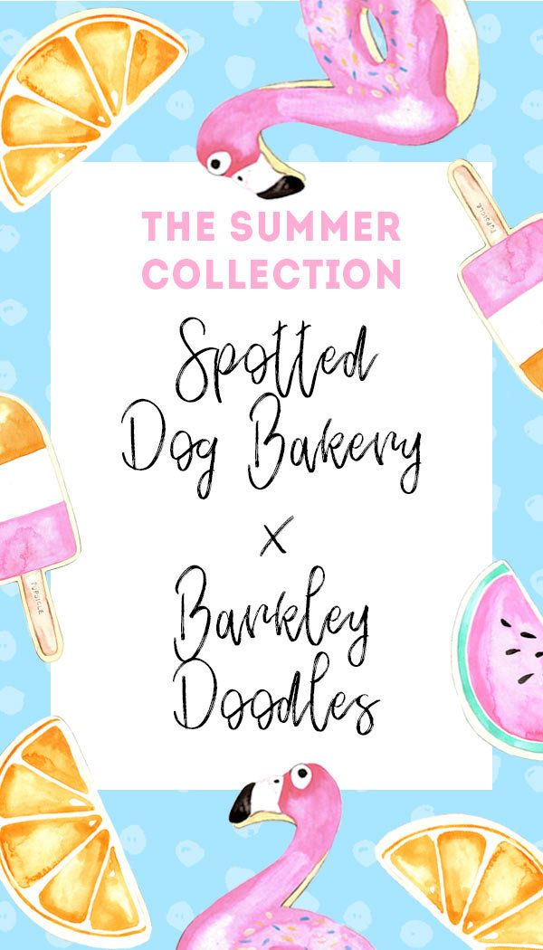 Barkley Doodles X Spotted Dog Bakery Barkley Doodles Summer