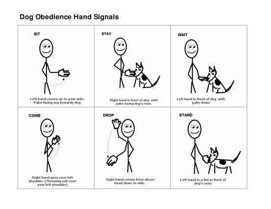 Dog Obedience Hand Signals Dog Training Hand Signals Dog