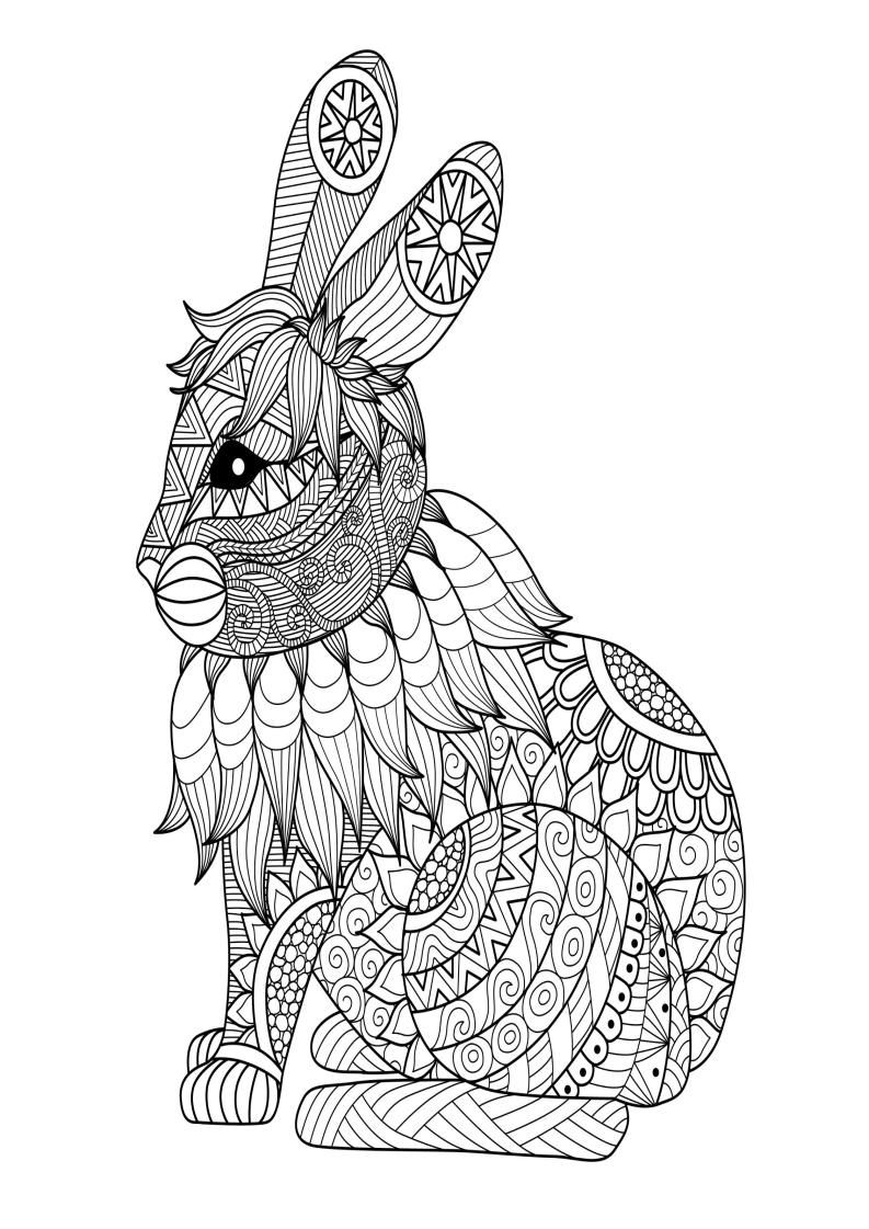 Mindfulness Coloring Page Rabbit Bunny Coloring Pages