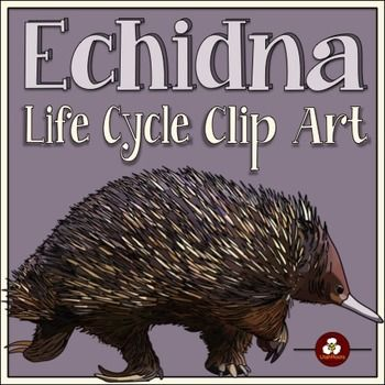 Echidna Life Cycle Clip Art | The o'jays, Hands and Clip art