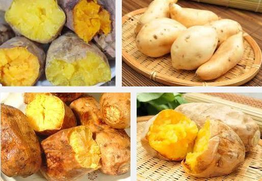 吃地瓜 地瓜葉(蕃薯)好處有那些?介紹地瓜及地瓜葉吃法 @ 金魚不是魚 :: 隨意窩 Xuite日誌