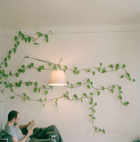 Ivy Indoor Plant Trellis