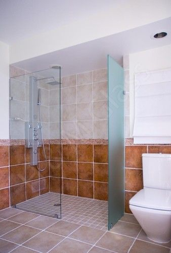 Walk In Shower Frameless Splash Guard Pa Design Pictures Remodel Decor And Ideas Bathrooms Remodel Walk In Shower Downstairs Bathroom