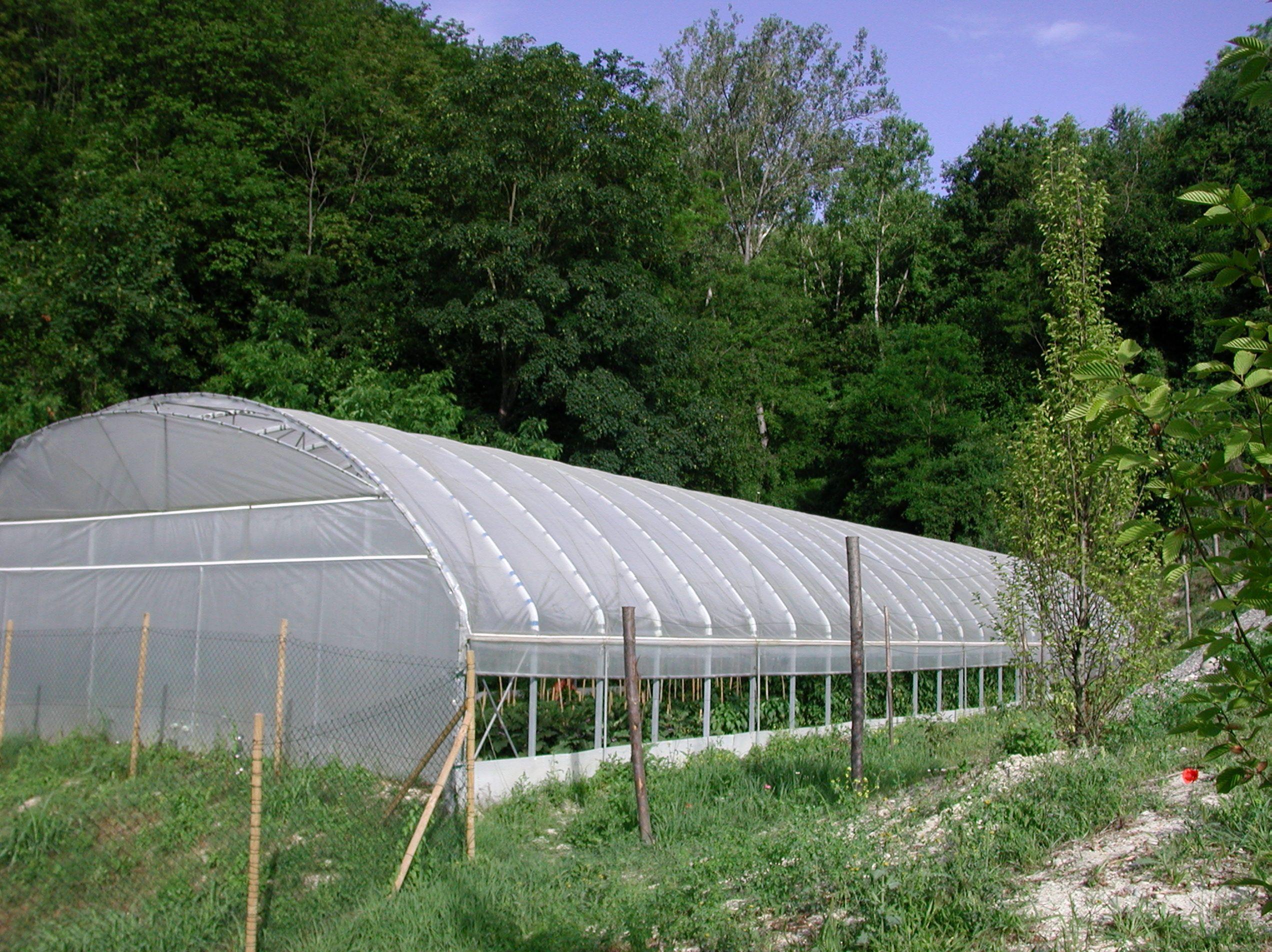 Costruire Una Mini Serra Riscaldata la nostra serra riscaldata. | serra, esterno e fiori