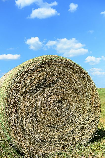 It's that time of year for Round Hay Bale's p Square.. I love the country life!!