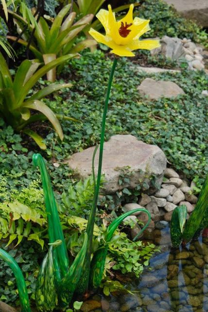 A glass flower in the East Room by the stream. Phipps ~WMG