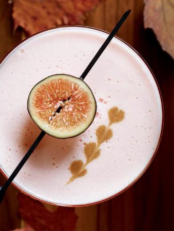 Fig Walnut Sour Recipe Details Fig Syrup Recipes