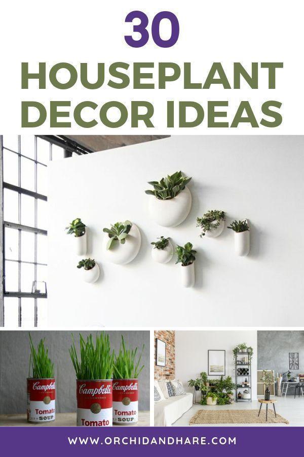 Photo of 30 Ideen für Zimmerpflanzendekore | So zeigen Sie Ihre Zimmerpflanzen an # decor #display #ho …