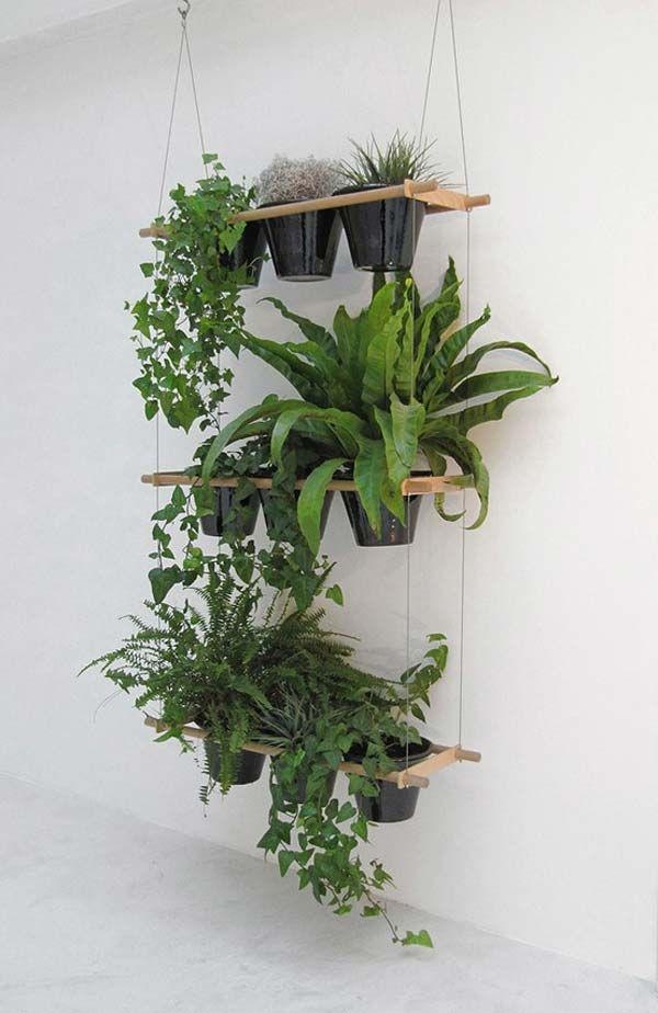 Draußen ist es nass und kalt Hol Dir den Garten ins Haus - pflanzen für wohnzimmer