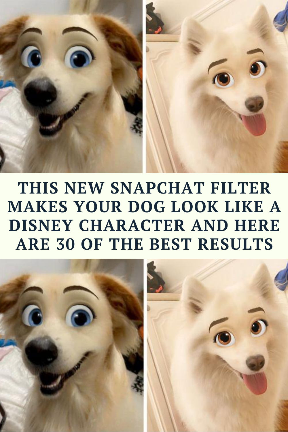 This New Snapchat Filter Makes Your Dog Look Like A Disney