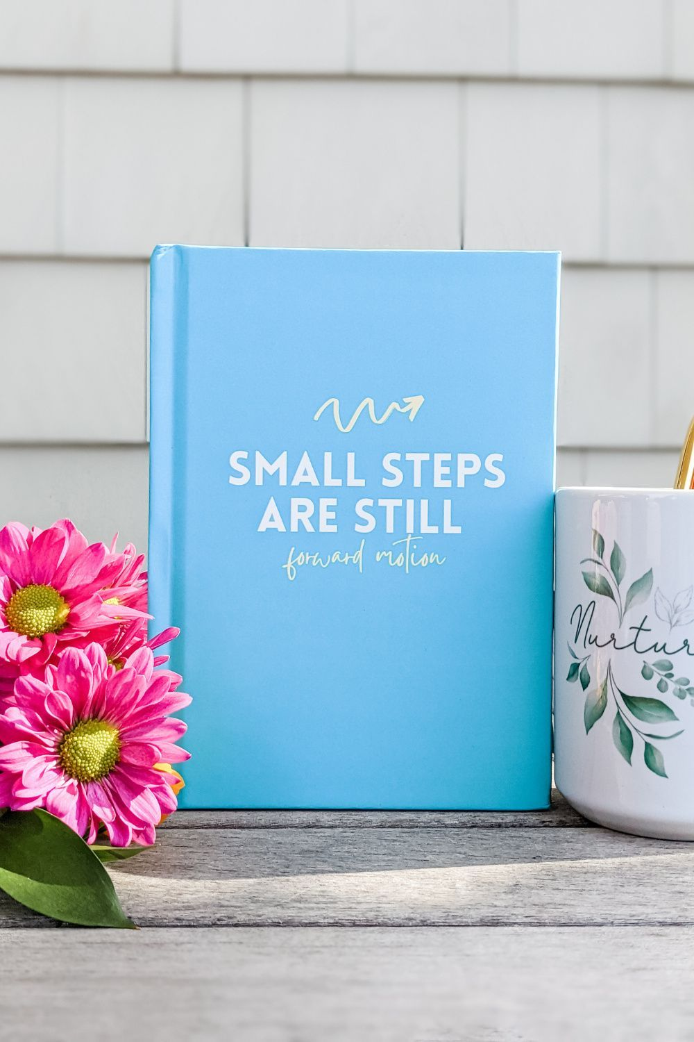 SMALL STEPS JOURNAL