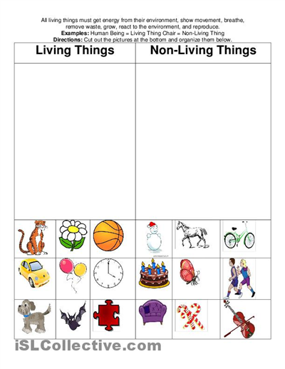 Living Nonliving Free Worksheets Yahoo Image Search