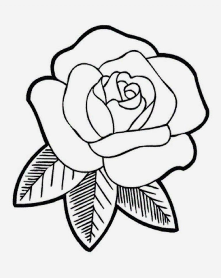Rose Flower Coloring Pages Graphic Good Rose Drawing Simple Easy Flower Drawings Flower Drawing