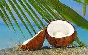 coconut - offering to Yemaya