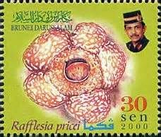 brunei postage stamps - Yahoo Image Search Results