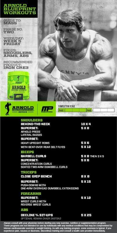 Workout posted by advancedweightlosstips all workouts workout of the day arnold blueprint to mass shouldersarmsabs powered by tag someone that wants arms like arnold malvernweather Choice Image